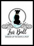 Fur Ball: Dress Up to Save a Pup