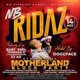 Motherland Block Party 6